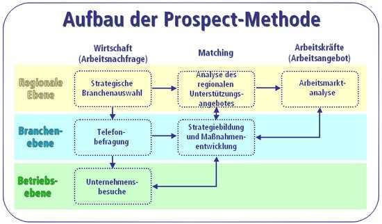 Prospect_Aufbau